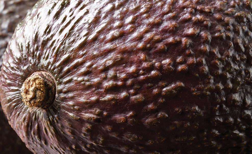 DelMonteProductImage-Avocado_1-988X604