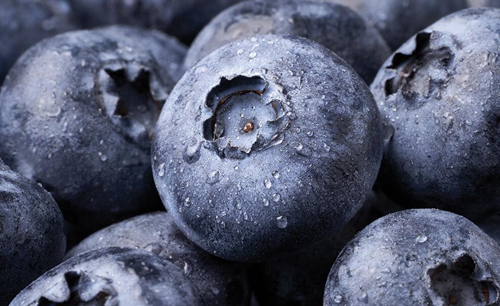 DelMonteProductImage-Blueberries-988X604