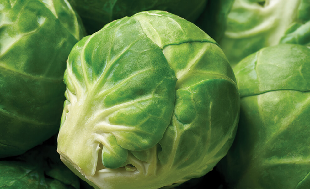 DelMonteProductImage-BrusselSprouts_1-988X604